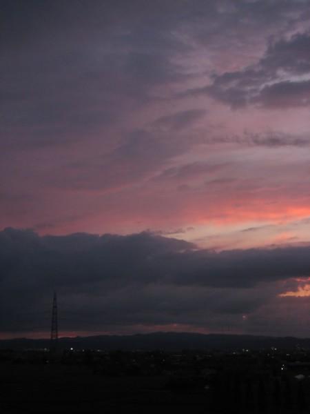 薄紅の夕景