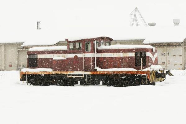 雪持ちのケキ102