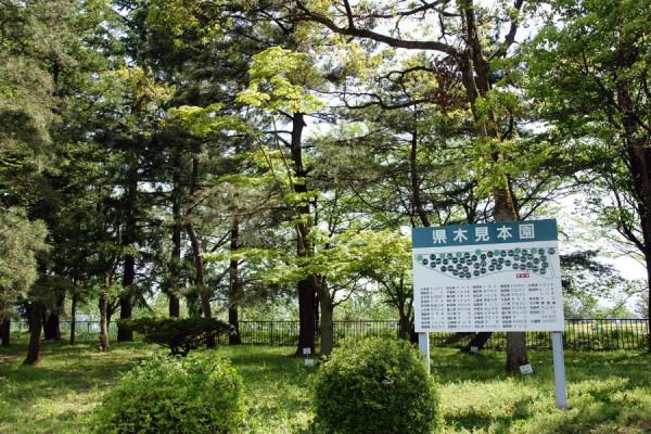 富山市営農サポートセンターの県木見本園