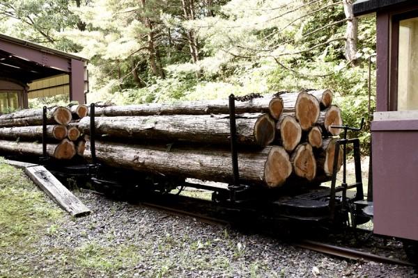 木曾森林鉄道の木材運搬車