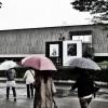 国立西洋美術館「レンブラント展」