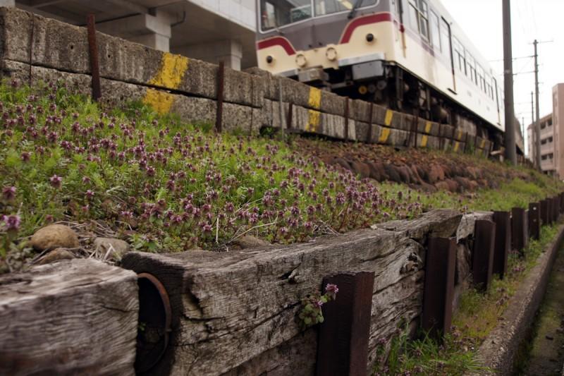 富山地方鉄道 本線 電鉄富山~稲荷町間にある古レール